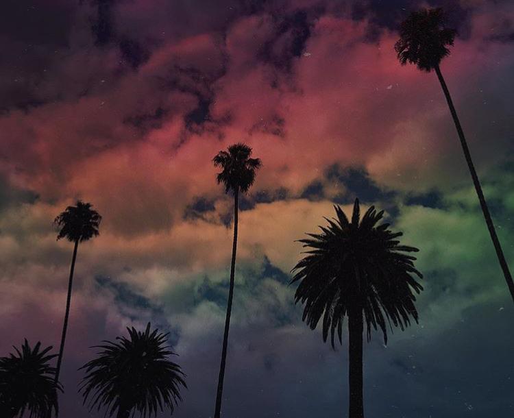 Leina_Tropical_Dream.jpg