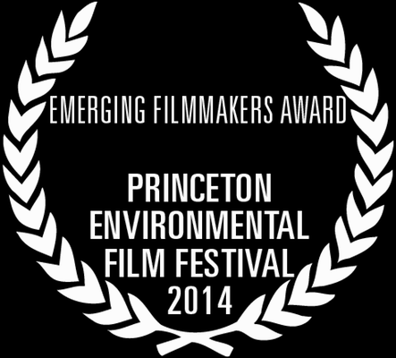 2014_PEFF_Wreath_EmergingFilmmakers.png