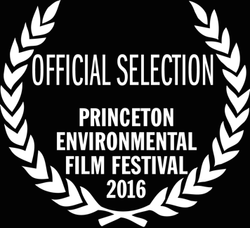 2016_PrincetonEFF.png