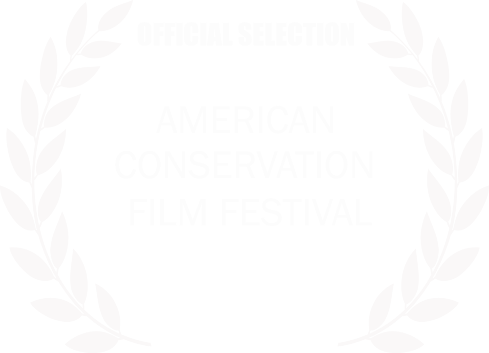 2016_ACFF_Official Selection Laurels large copy.png