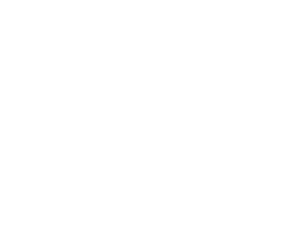 2018_VIMFF_white laurels.png