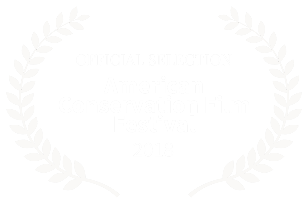 2018_AmericanConservationFF_WhiteLaurels copy.png