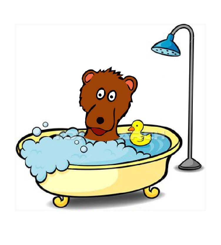 Washing bear raccoon funny danish words