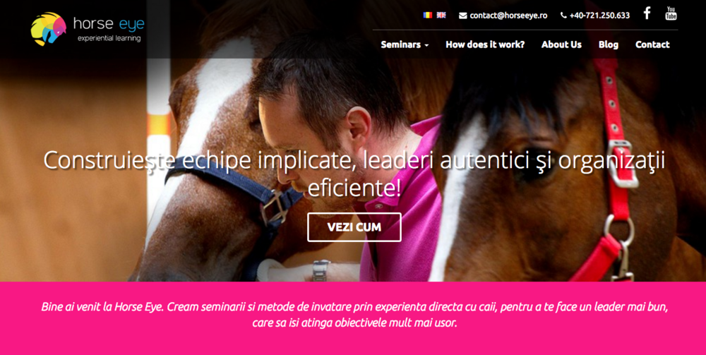 HorseEye - the first experiential leadership training company - through horses, for people