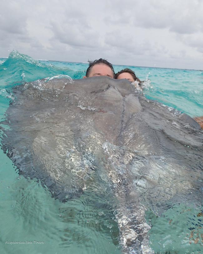 Tours to Stingray City Sandbar in Grand Cayman