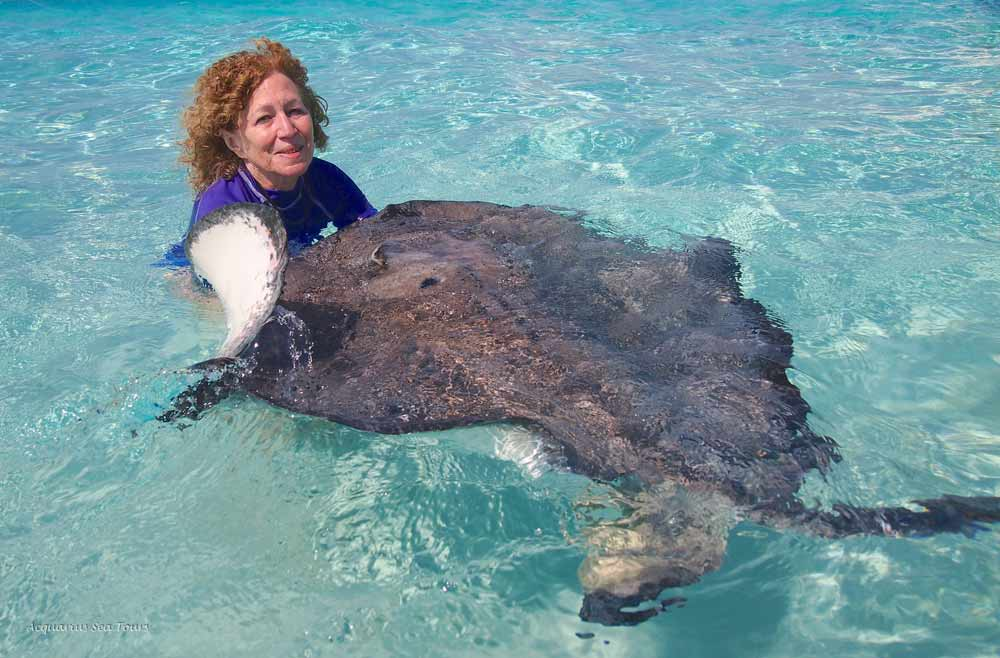 "Cradling ""Stumpy"" as  Stingray City  in Grand Cayman"