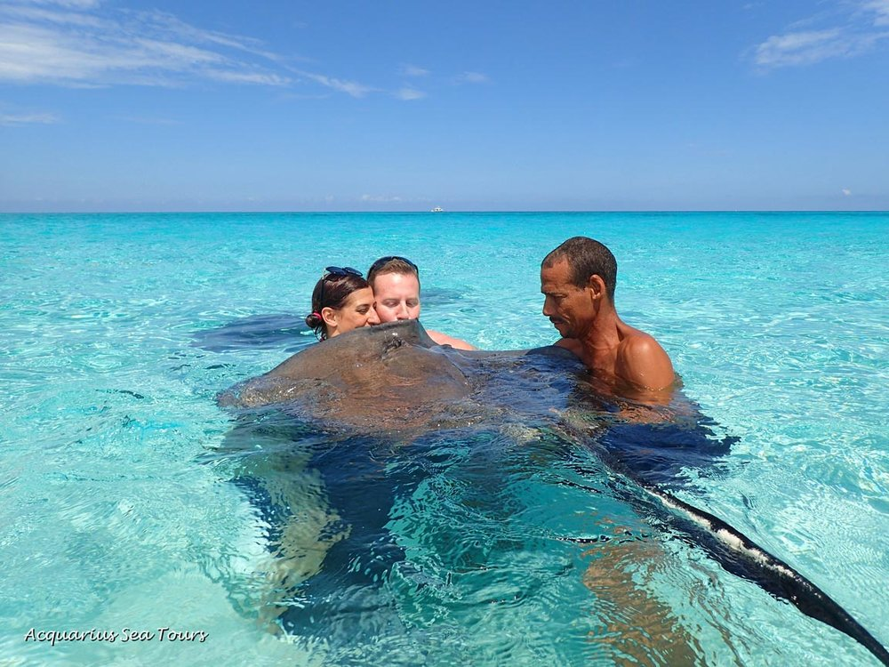 Stingray City in Grand Cayman - smooth horizons and salty kisses