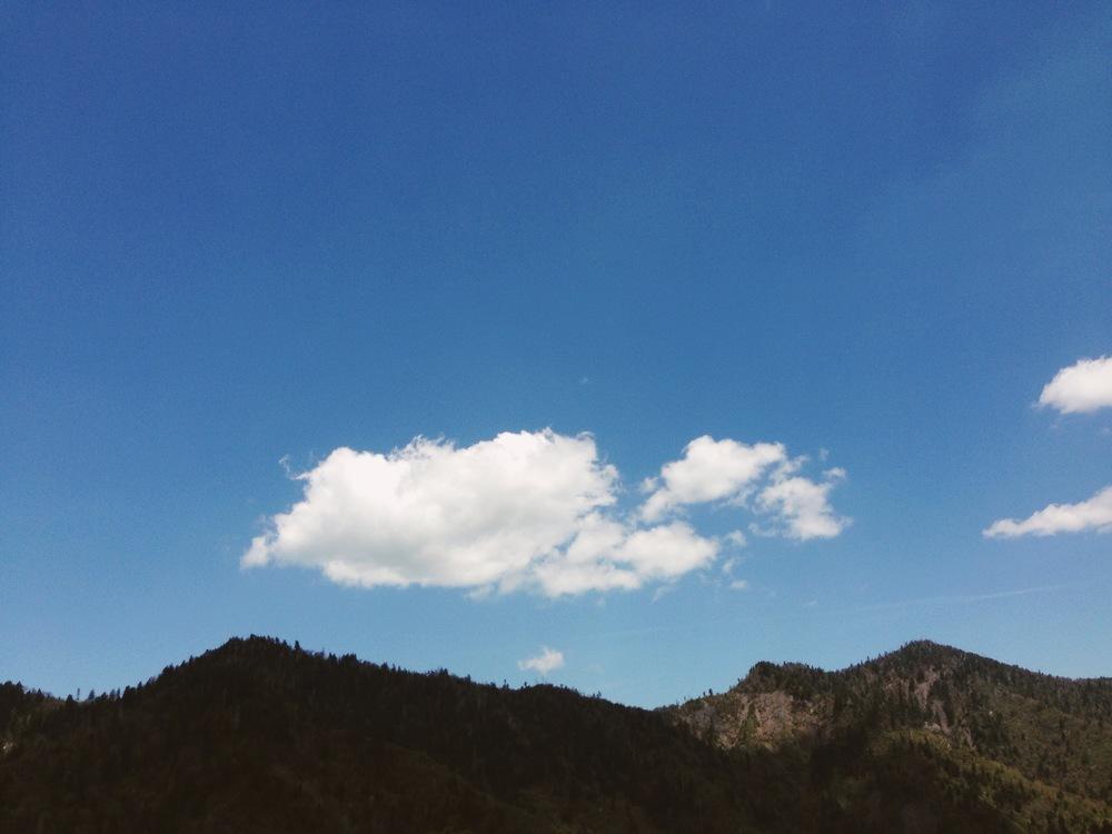 Photo May 08, 12 53 26 PM.jpg