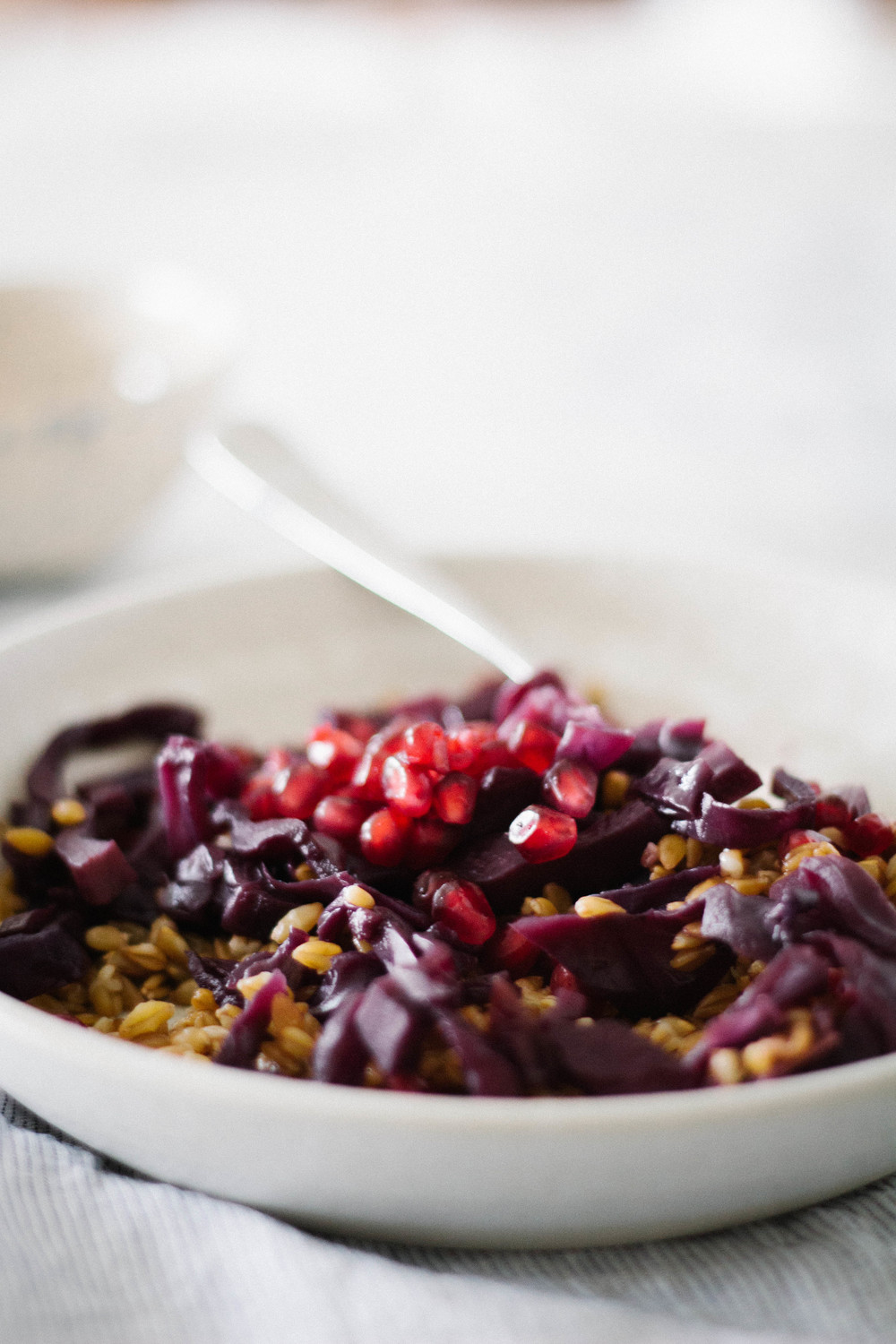 slow-braised cabbage w/ einkorn berries & pomegranate