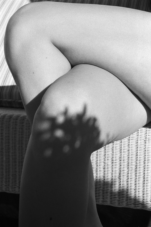 legs2.jpg