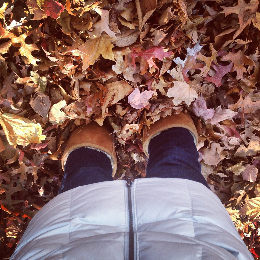 The leaves at the park are almost up to the knees these days.