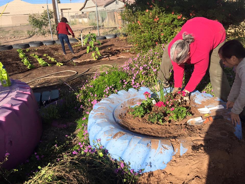 community tire garden lfa staff