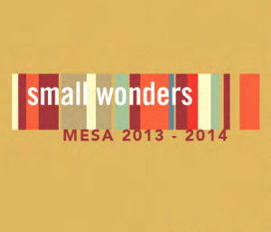 Mesa Small Wondres Map