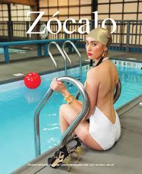 Photo courtesy of Zocalo Magazine.  Check out Zocalo's great article on the MOCA pool installation.