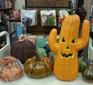 A local, seasonal display of pumpkins from Bookmans Phoenix!