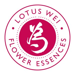 Lotus Wei FE Seal