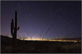 Tucson citylights