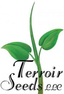 TerroirSeedsLogo