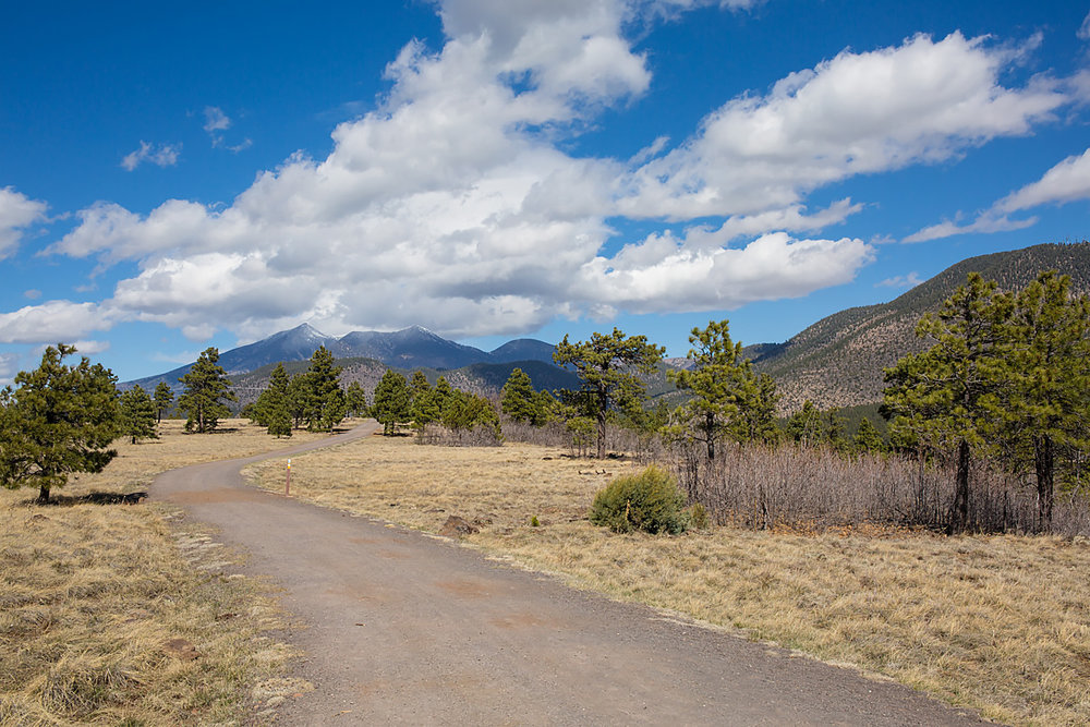 Buffalo Park, Flagstaff - Photo Credit:  Friends of Flagstaff's Future
