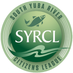 SYRCL Logo.png