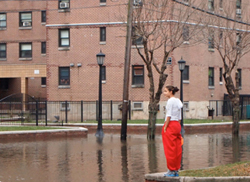 NYCHA & the Hurricane: Public housing learns from Sandy... What's the plan for the next big storm?