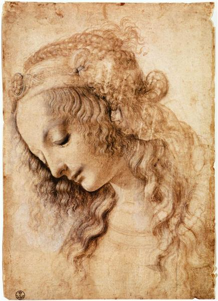 woman-s-head.jpg