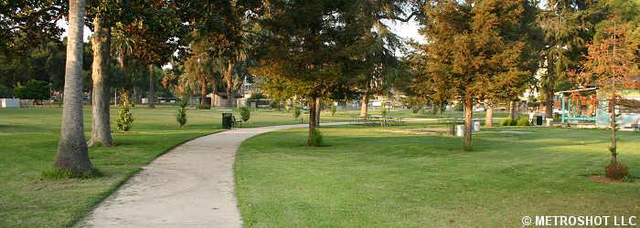 centralparktrees