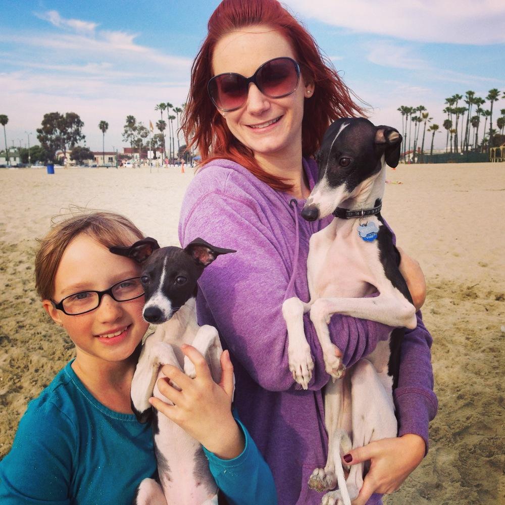 Melissa Shipley and her Italian Greyhound Winston at the beach where they met a fellow Italian Greyhound puppy!