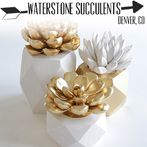etsy.com/shop/waterstonesucculents