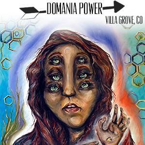 www.domaniapower.com