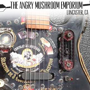 the angry mushroom emporium.jpg