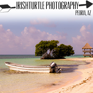 irishturtle photography.jpg