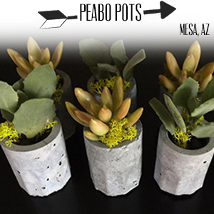 Peabo Pots.jpg
