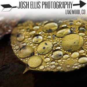 Josh Ellis Photography.jpg