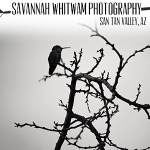 Savannah Whitwam Photography.jpg