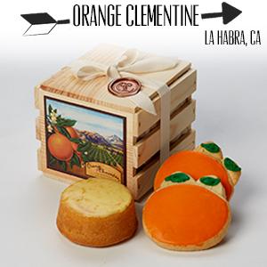 Orange Clementine.jpg