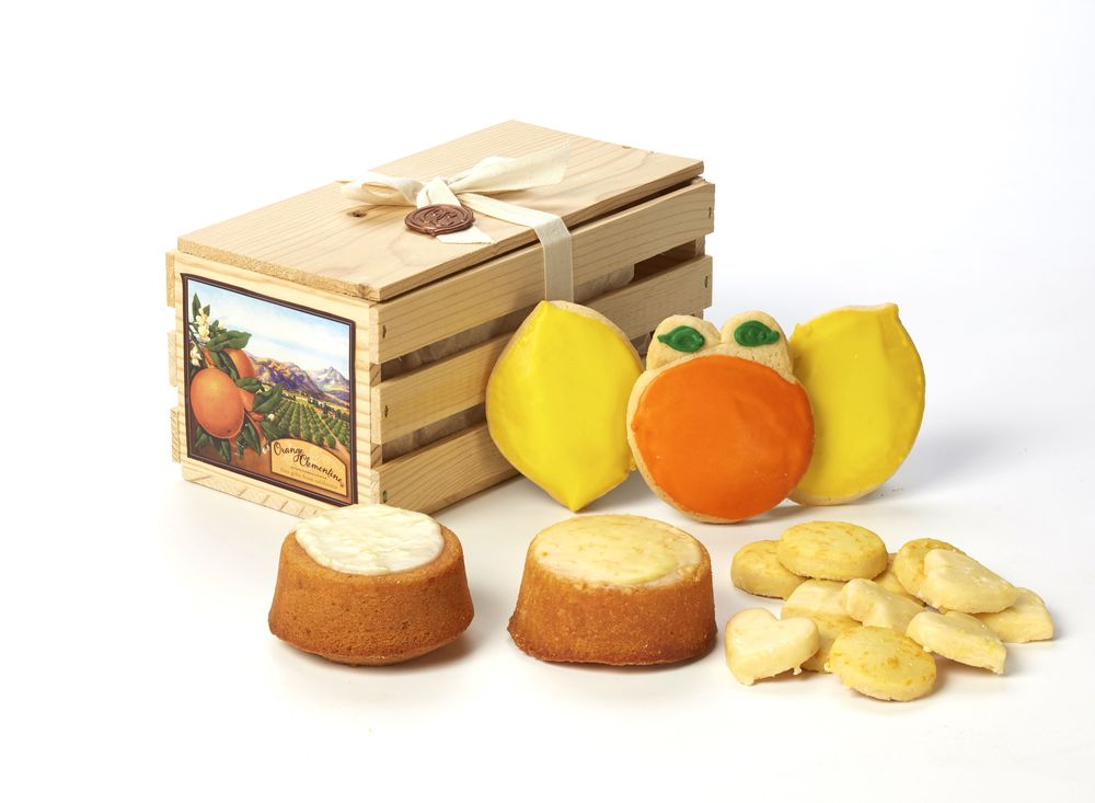 scv box product 5679.jpg