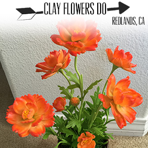 Clay Flowers Do.jpg