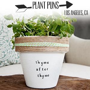 Plant Puns.jpg