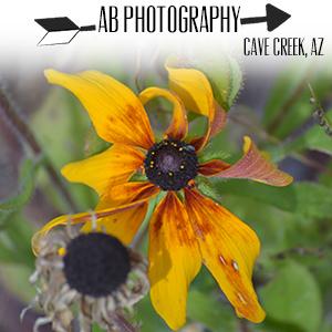 AB Photography.jpg