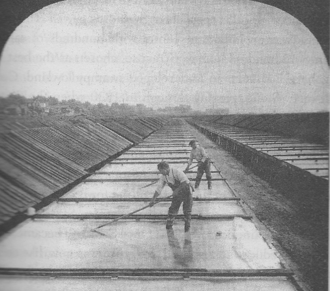 Half of an 1890 stereoscopic card of the Onondaga saltworks showing salt being harvested from solar evaporation vats.