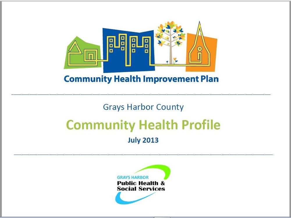 Community Health Profile 2013.JPG