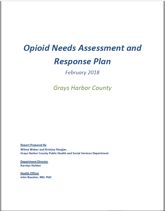 Download and print the Opioid Needs Assessment and Response Plan, February 2018 (.pdf)