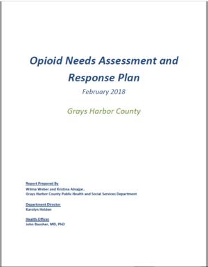 Opioid needs assessment.png