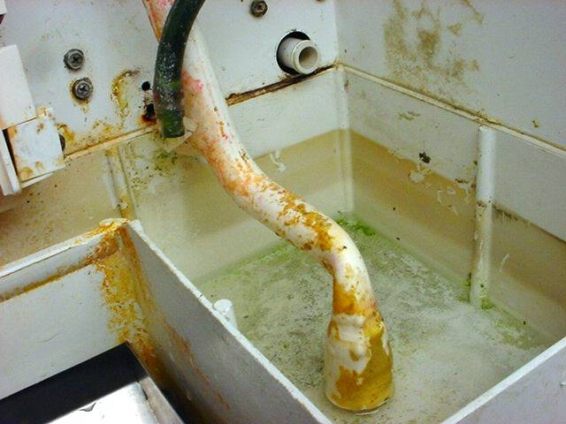 Does your ice Machine look like this on the inside?  Call us ASAP to clean it.