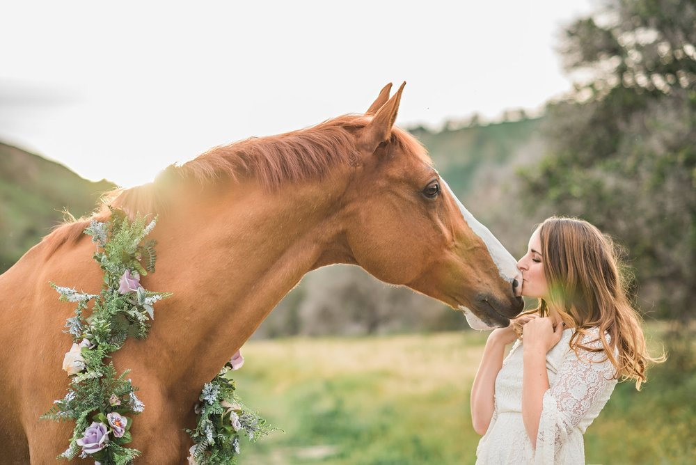 Photo of Ashleigh and her horse Amadeus aka Moe,taken by Holly Casner Photography