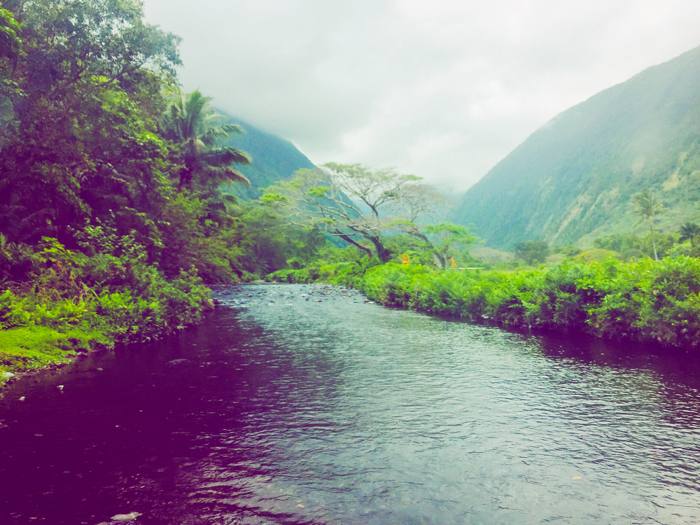 One of the many river crossings on the floor of the Waipi'o Valley
