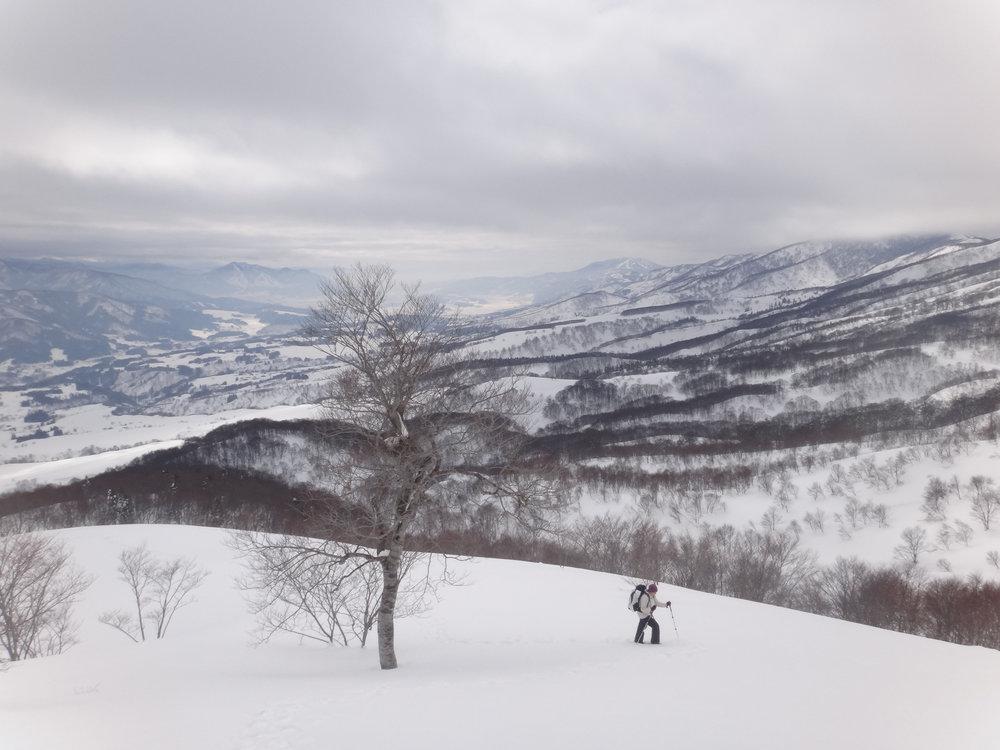 Snow Country Trek