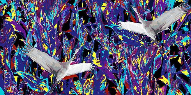 purple crane.jpg