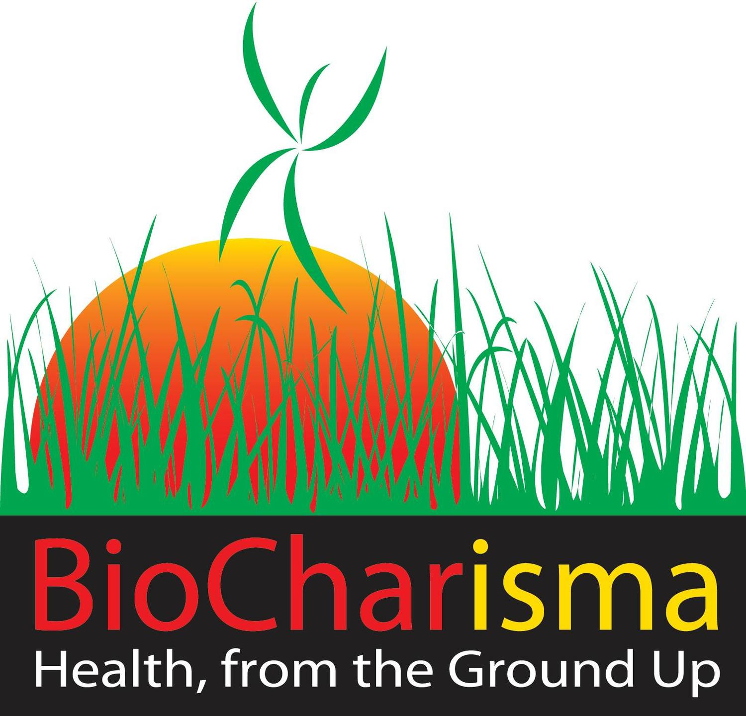 The BioCharisma Podcast - BioCharisma